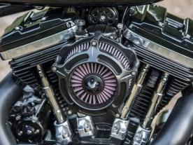 Die Motorenwahl ist der Führerscheinregelung in den Niederlanden geschuldet. Als Zwanzigjähriger darf Haico mit seinem A2-Führerschein lediglich mit maximal 35 kW unterwegs sein. Dafür ist die Sportster 883 die beste Basis
