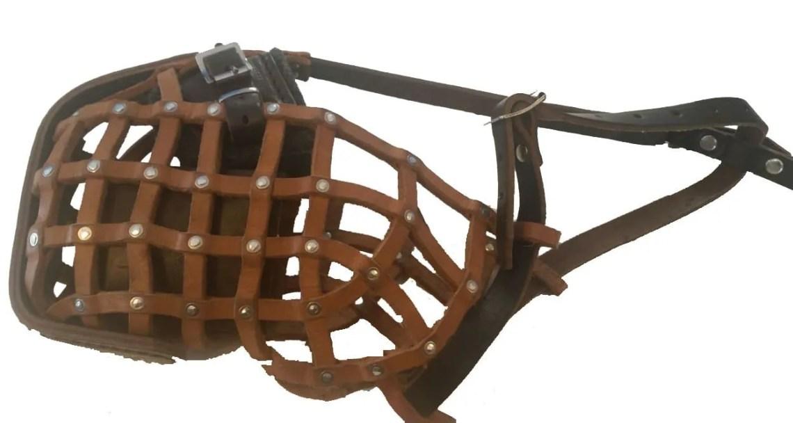 Basket Weave Muzzle