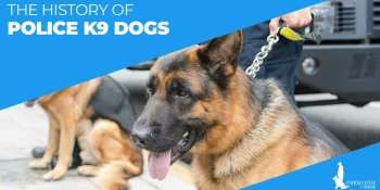The History Of Police K9 Dogs