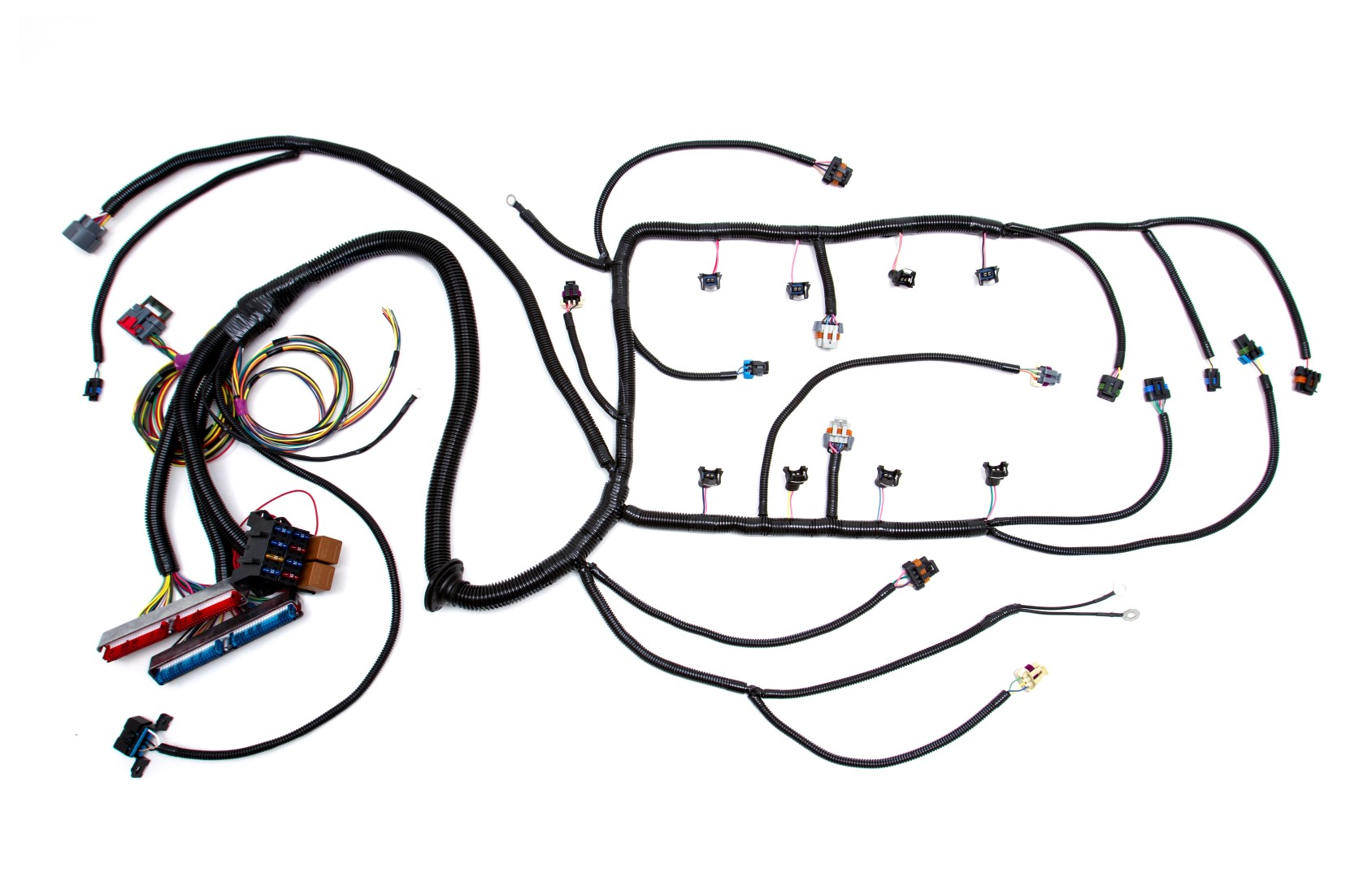 Ls2 Engine Gm Wiring Harness