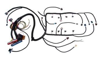 97 - '02 LS1 W/ 4L60E STANDALONE WIRING HARNESS (DBC ...  L E Wiring Harness on
