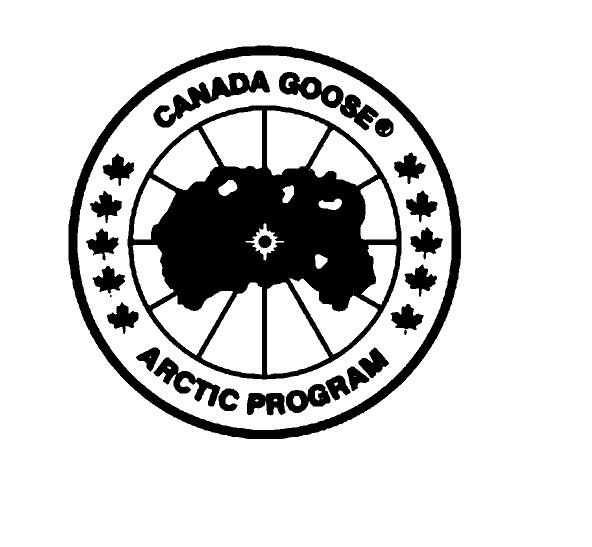 canada goose vinyl transfer