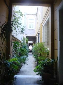Atravesando un pasillo lleno de vegetación...