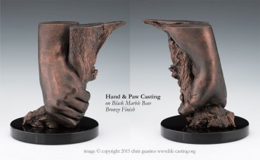 Hand and Paw Casting