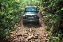 Jeep Wrangler Cover Photo