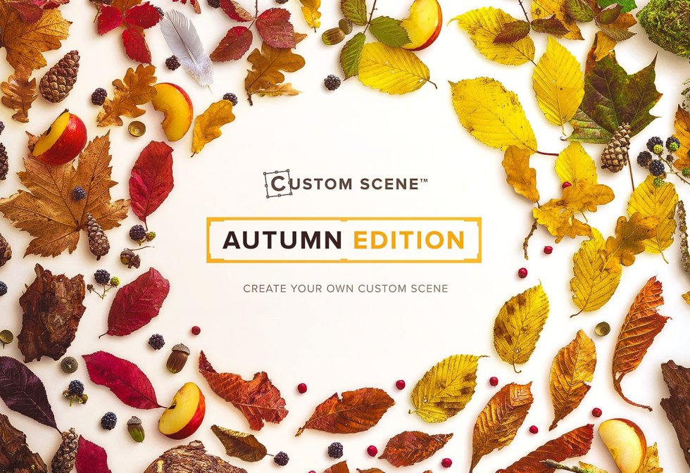 autumn-edition-custom-scene-cover