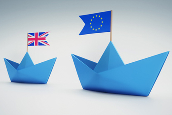 Government's Customs Union Stance