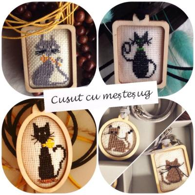 colectie pisici