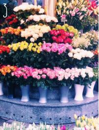 Capture d'écran 2015-04-30 à 15.01.16