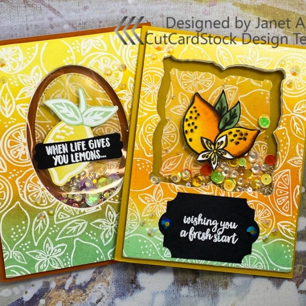 Inside-Out Window Surprise Card