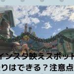 bae001 min - インスタ映えスポット【ディズニー】自撮りはできる?注意点は?
