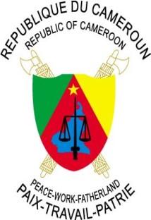 Centre d'innovation numérique Cameroun