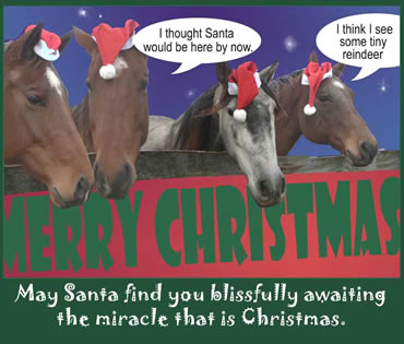 Christmas Greeting 4 Horse Cute Christmas Cards