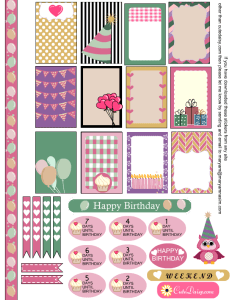 Birthday Sampler Sticker Kit for Happy Planner