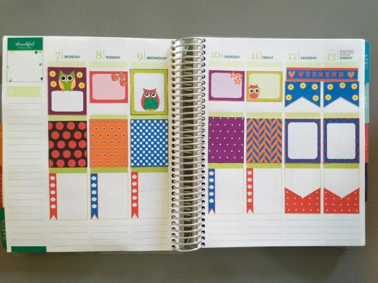 cute colorful owl stickers used in planner