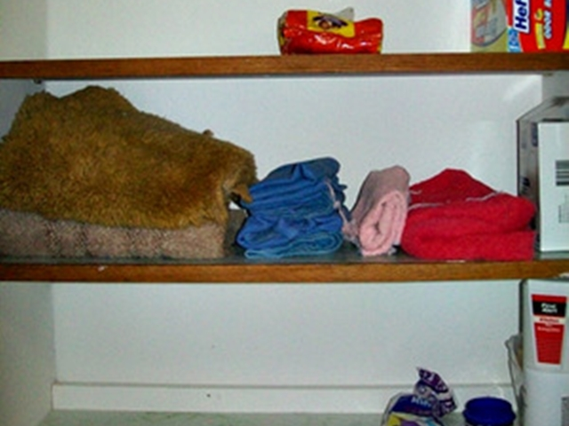 Old rugs & towels, clean up towels, trash bags. You will need to bring your laundry detergent in this Beaver Lake Cabin Rental
