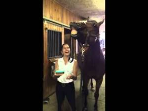 Horse Blows Out His Birthday Candles