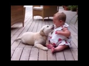 Puppy Is SO Excited To See Baby