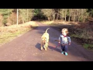 VIDEO: Best Friends - A Kid, A Dog and a Puddle