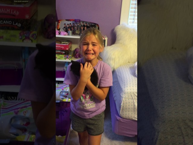 Girl Meets Kitten for the First Time and Cries Tears of Joy!