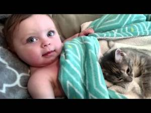 A Baby and Her New Kitten video