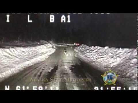 Heroic German Shepherd Leads Alaskan State Trooper To Burning Home