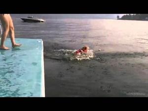 Cute Corgi Flop funny swimming video