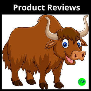 Product-Review-Writing-Service