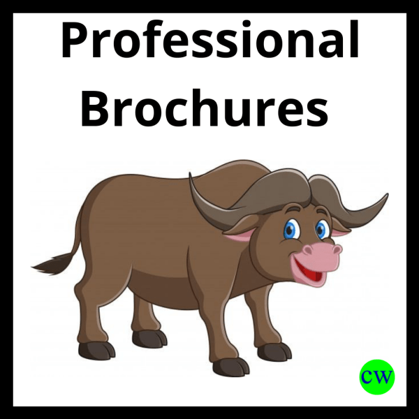 Professional-Brochure-Writing-Service