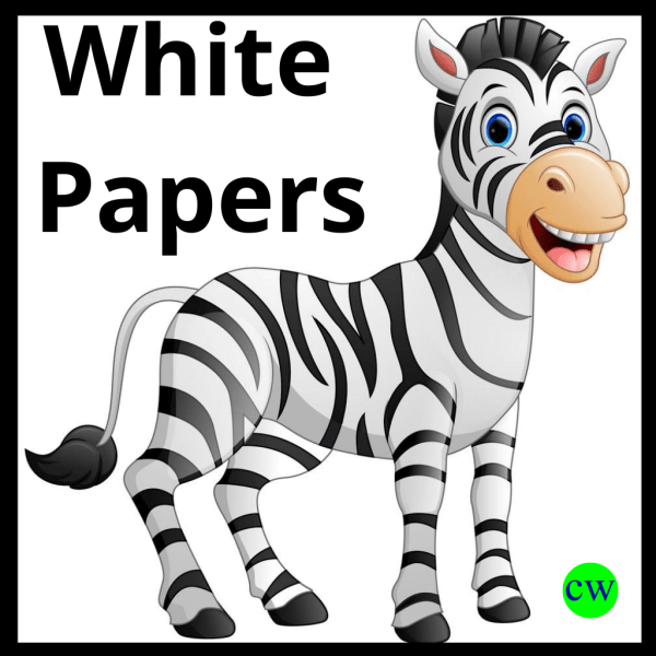 White-Paper-Writing-Service