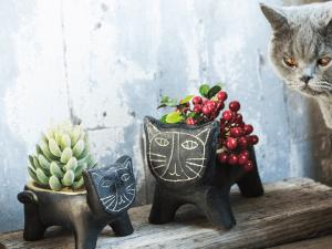Katten Bloempot van Beton