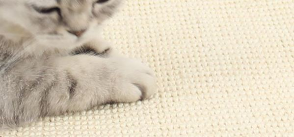 Het krabmateriaal van de Sisal Krabmat voor Katten
