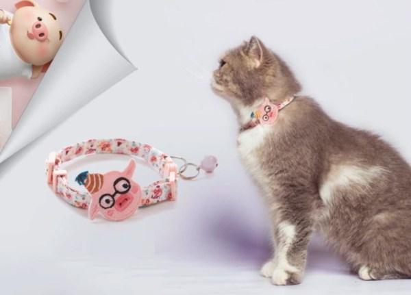 Kat draag kattenbandje met big figuurtje