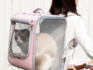 Luxe Katten Rugzak Reistas