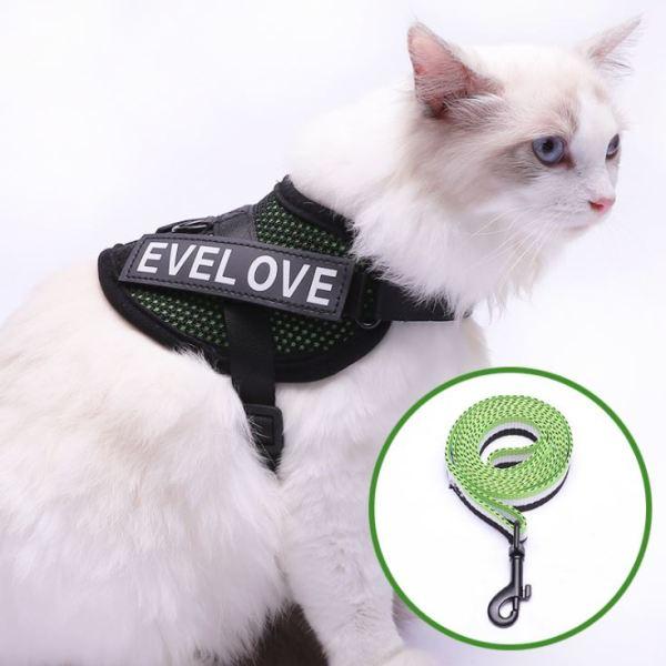 Kattenharnas met Leiband zwart met groene lijn