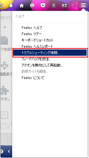 ff32-64chk_02