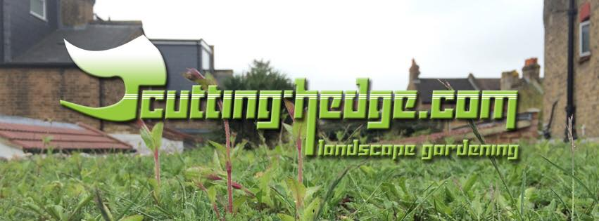 Cutting Hedge landscape gardening