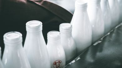 Photo of Cutting Calories? This Is the Milk You Need to Drink