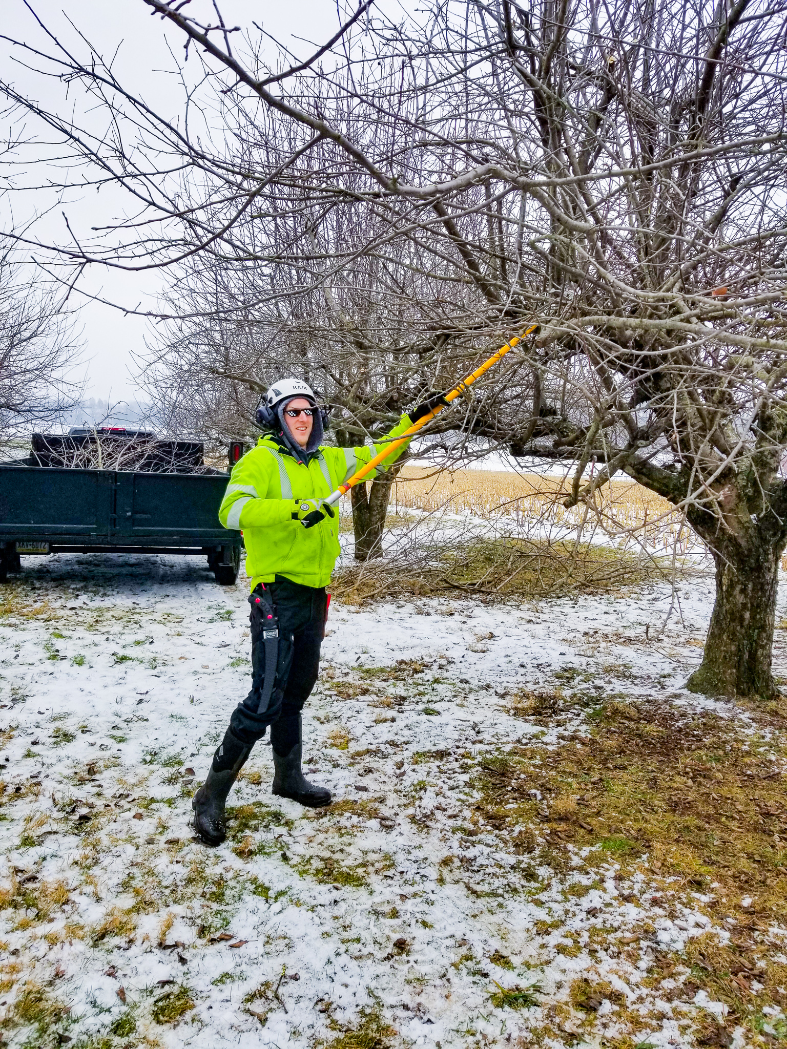 Pruning in Winter_Cutting Edge Tree Professionals