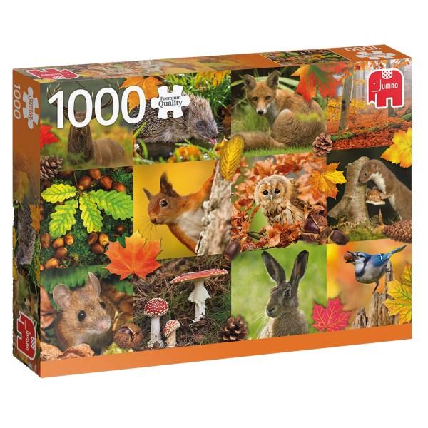 Cuy Games - 1000 PIEZAS - AUTUMN ANIMALS -