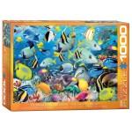 Cuy Games - 1000 PIEZAS - OCEAN COLORS BY HOWARD ROBINSON -