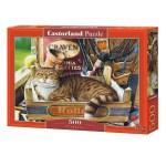 Cuy Games - 500 PIEZAS - FOTHERGILL -