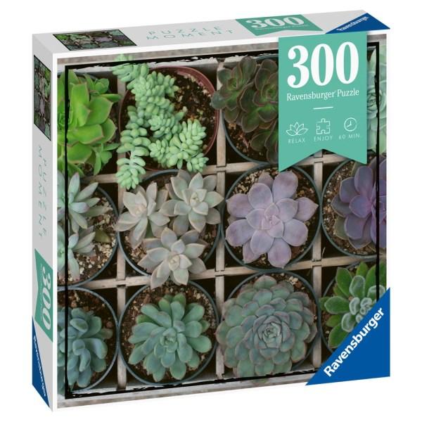 300 PIEZAS – MOMENT PUZZLE – PLANTAS