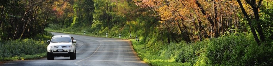 Driving Through Fall Foliage