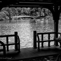 Lakeside Summer