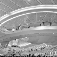 Calatrava's Universe