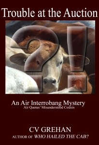 Writing humor. Mock cozy mystery cover. An Air Interrobang Mystery. I would read this! (No, I wouldn't.)