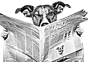 Dog reading paper PAID IMAGE rendered
