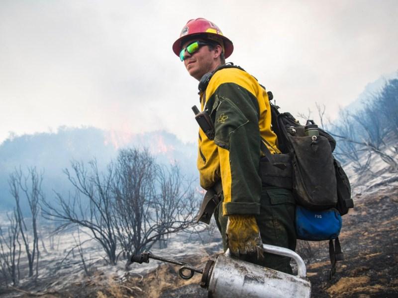 Stuart Palley/U.S. Forest Service