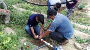 Instalación de riego tecnificado.